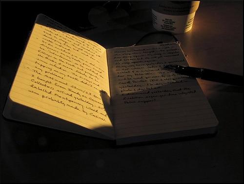 Moleskine pen placed on notebook.
