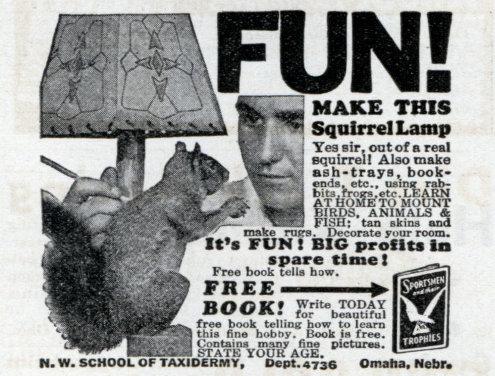 vintage Squirrel Lamp taxidermy ad advertisement