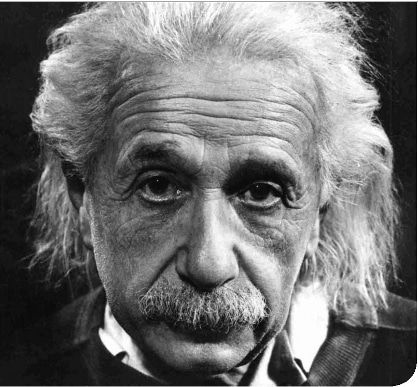 albert einstein headshot famous mustache facial hair