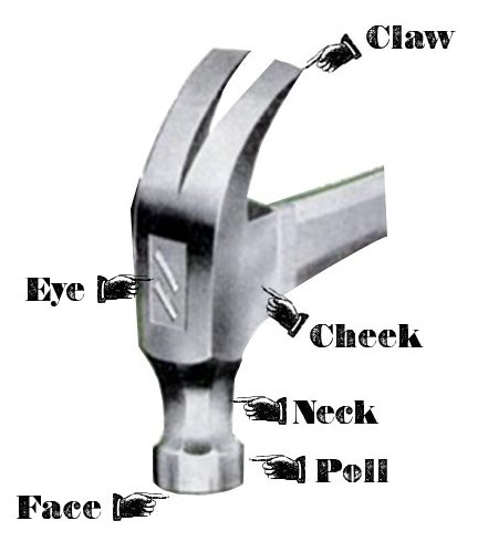 parts of a hammer tool anatomy claw neck