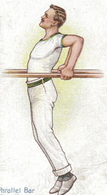 vintage illustration parallel bar dip gymnast