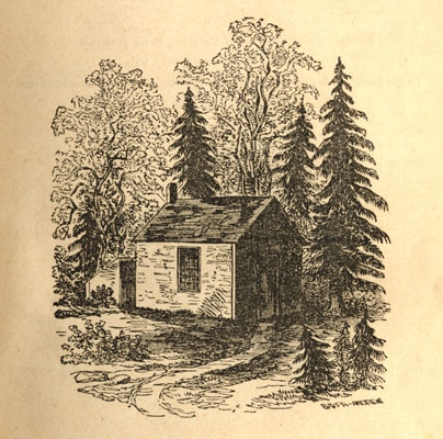 Illustration of a wooden house in jungle.