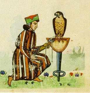 vintage antique falconry court jester illustration