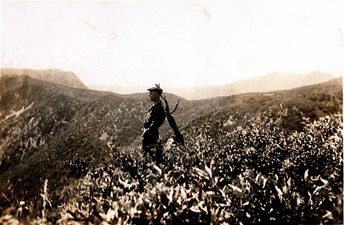 vintage man standing on hill alone landscape
