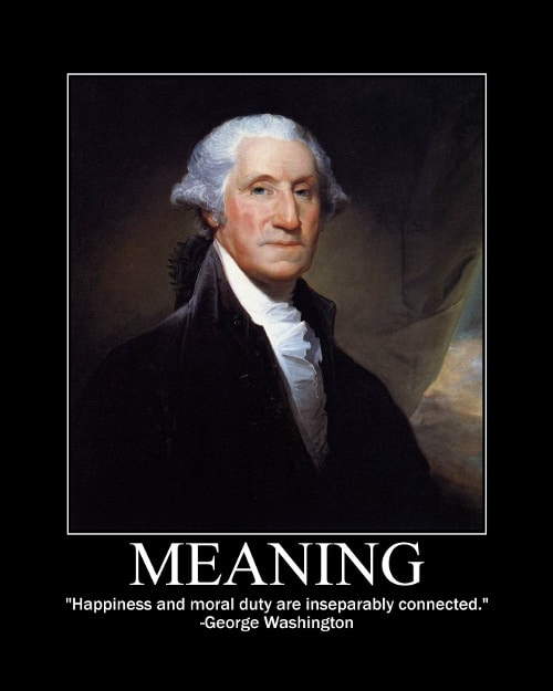 George Washington's Meaning quote motivational poster.