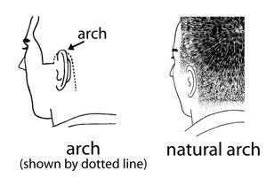 barber haircut arches natural arch diagram illustration