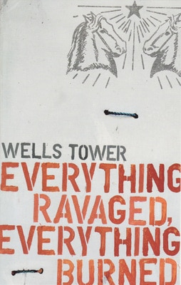 everything ravaged everything burned book cover wells tower