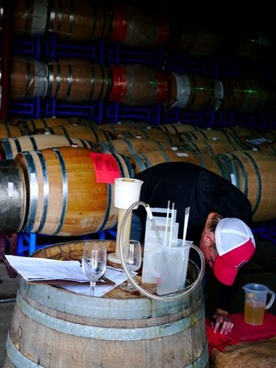 wine barrel room testing white wine fermentation