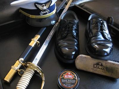 KIWI Shoe Polish Kit