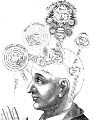 vintage memory parts of brain diagram illustration