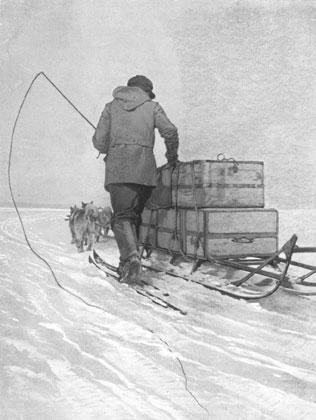 Man drift the sledge with snow drifting.