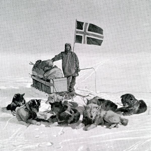 Man with snow dogs and sledge in snow.