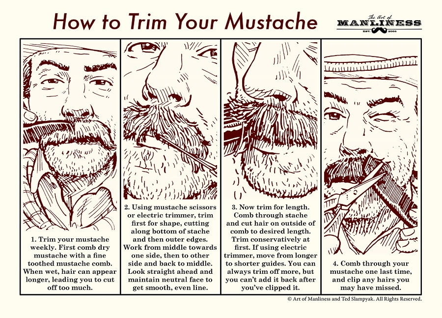 1. Trim your mustache weekly. First comb dry mustache with a fine toothed mustache comb. When wet, hair can appear longer, leading you to cut off too much.  2. Using mustache scissors or electric trimmer, trim first for shape, cutting along bottom of stache and then outer edges. Work from middle towards one side, then to other side and back to middle. Look straight ahead and maintain neutral face to get smooth, even line.  3. Now trim for length. Comb through stache and cut hair on outside of comb to desired length. Trim conservatively at first. If using electric trimmer, move from longer to shorter guides. You can always trim off more, but you can't add it back after you've clipped it.  4. Comb through mustache one last time, and clip any hairs you may have missed.