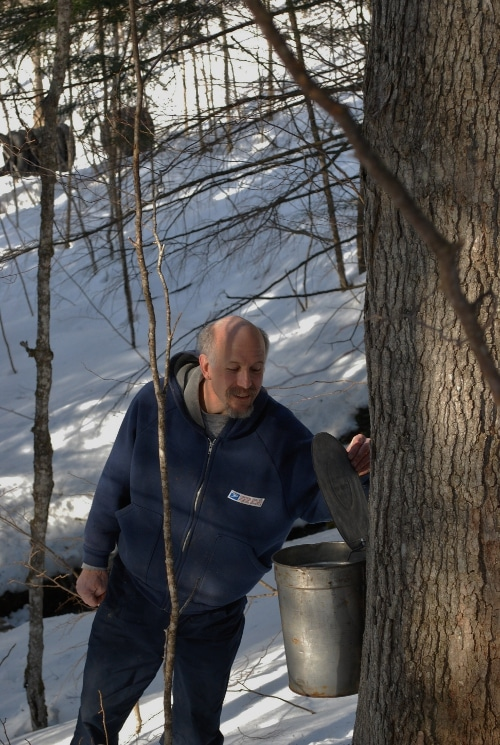 Man checking the sap accumulating in cold weather.