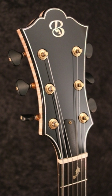 Cord panel of equisetic guitar.