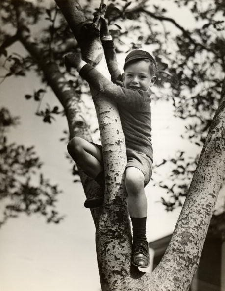 Vintage young boy climbing tree smile on face.
