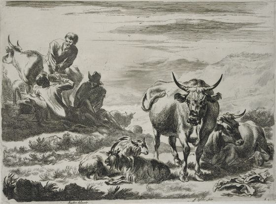 Northern European herdsmen cattle illustration.