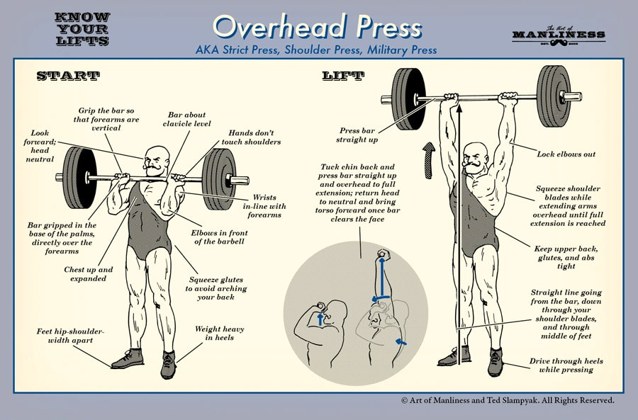 Start. Look forward; head neutral. Grip the bar so that forearms are vertical. Bar about clavicle level. Hands don't touch shoulders. Wrists in line with forearms. Elbows in front of the barbell. Squeeze glutes to avoid arching your back. Weight heavy in heels. Feet hip-shoulder-width apart. Chest up and expanded. Bar gripped in the base of the palms, directly over the forearms.  Life. Press bar straight up. Lock elbows out. Squeeze shoulder blades while extending arms overhead until full extension is reached. Keep upper back, glutes, and abs tight. Straight line going from the bar, down through your shoulder blades, and through middle of feet. Drive through heels while pressing. Tuck chin back and press bar straight up and overhead to full extension; return head to neutral and bring torso forward once bar clears the face.