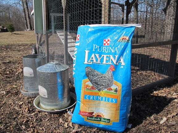 Food and water containers with Purina Crumbles.