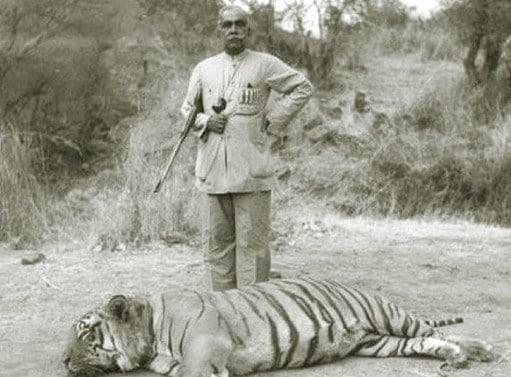 Vintage man hunter posing with dead tiger.
