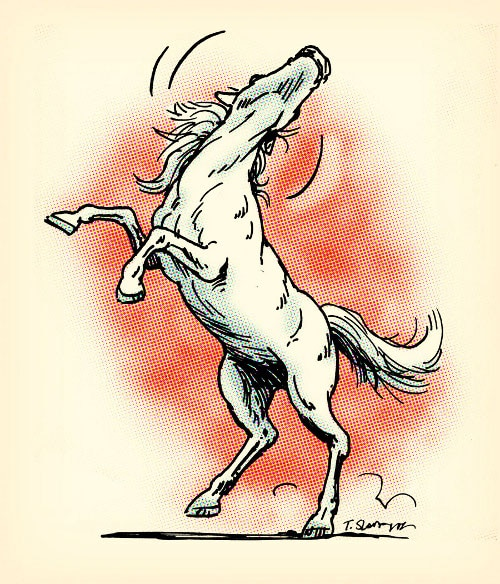 illustration wild white horse bucking angry