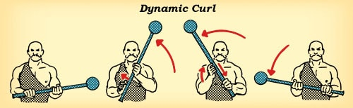 steel mace curl workout how to diagram illustration