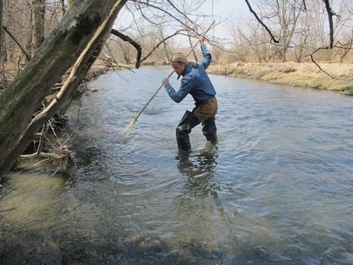 man using small game gig spear in river