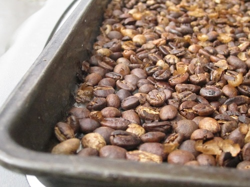 fresh roasted coffee beans cooling in cookie tray