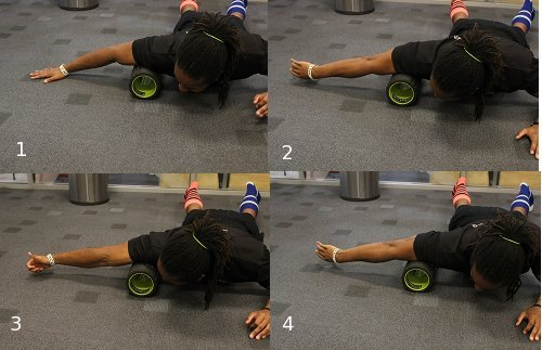 Foam roller exercises for biceps.