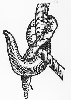 boy scouts vintage illustration knot around hook