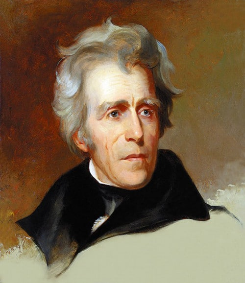 president andrew jackson portrait painting gray wavy hair