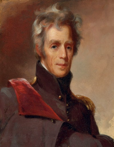 andrew jackson painting portrait military uniform gray wavy hair