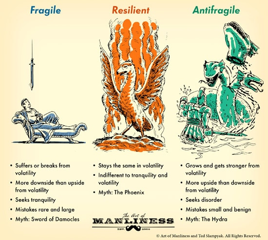 On Becoming Antifragile