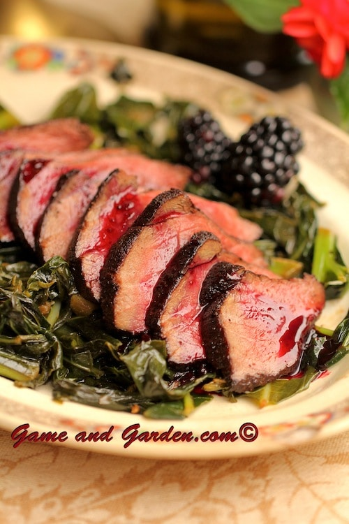 homemade Chili Cocoa Crusted Venison with Berry Reduction