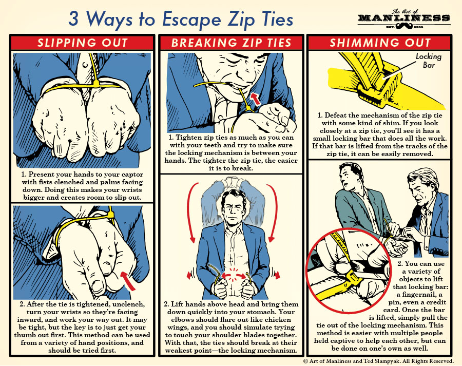 Slipping Out. 1. Present your hands to your captor with fists clenched and palms facing down. Doing this makes your wrists bigger and creates room to slip out. 2. After the tie is tightened, unclench, turn your wrists so they're facing inward, and work your way out. It may be tight, but the key is to just get your thumb out first. This method can be used from a variety of hand positions, and should be tried frist.  Breaking the Ties. 1. Tighten zip ties as much as you can with your teeth and try to make sure the locking mechanism is between your hands. The tighter the zip tie, the easier it is to break. 2. Lift hands above head and bring them down quickly into your stomach. Your elbows should flare out like chicken wings, and you should simulate trying to touch your shoulder blades together. With that, the ties should break at their weakest point – the locking mechanism.  Shimming Out. 1. Defeat the mechanism of the zip tie with some kind of shim. If you look closely at a zip tie, you'll see it has a small locking bar that does all the work. If that bar is lifted from the tracks of the zip tie, it can be easily removed. 2. You can use a variety of objects to lift that locking bar: a fingernail, a pin, even a credit card. Once the bar is lifted, simply pull the tie out of the locking mechanism. This method is easier with multiple people held captive to help each other, but can be done on one's own as well.