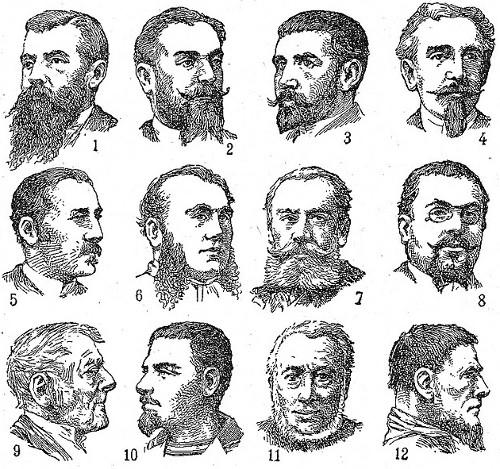 In 1800s vintage illustration man facial hair beard styles.