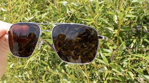 aviator sunglasses shades with brown lenses