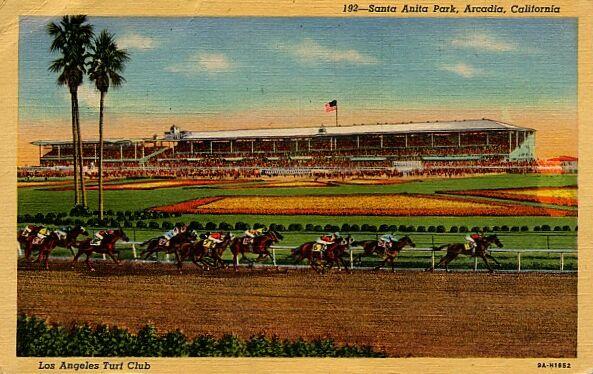 vintage postcard santa anita horse track horse races california