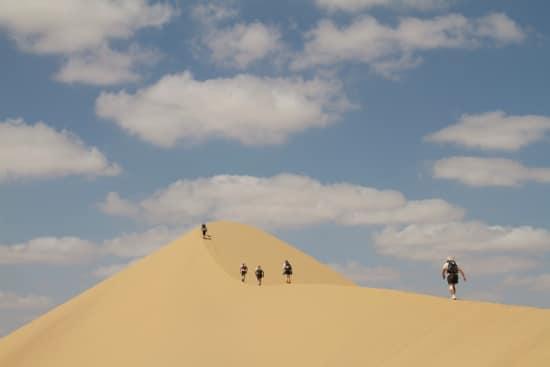 runners in sahara desert ultra marathon running on sand dune ridge