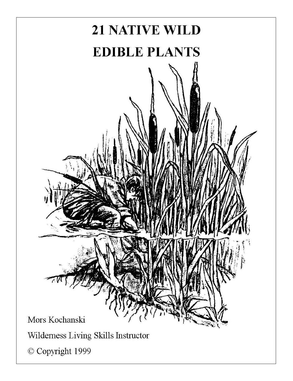 Book Cover,21 Native Wild Edible Plants by Mors Kochanski.