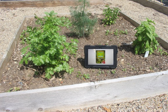 square-foot-kindle