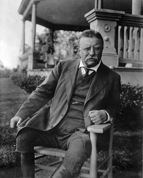 teddy theodore roosevelt sitting outside portrait