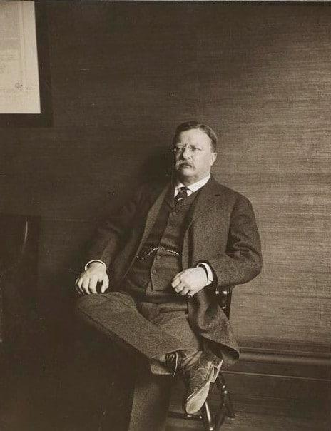 teddy theodore roosevelt portrait sitting in chair