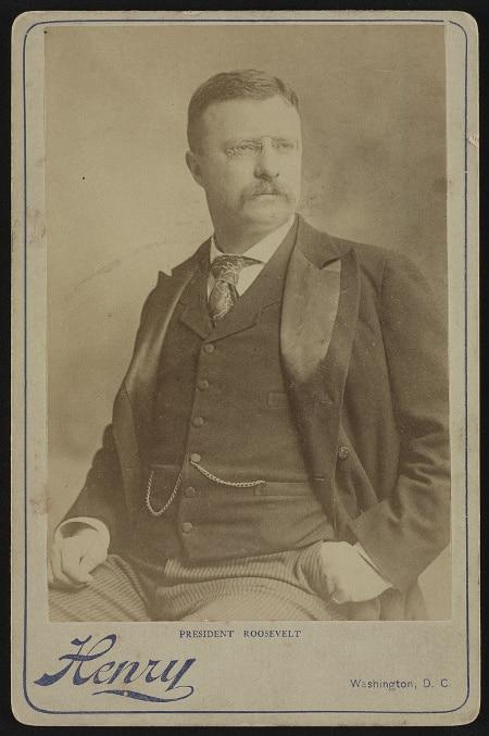 teddy theodore roosevelt sitting portrait