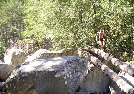 man walking across log in nature