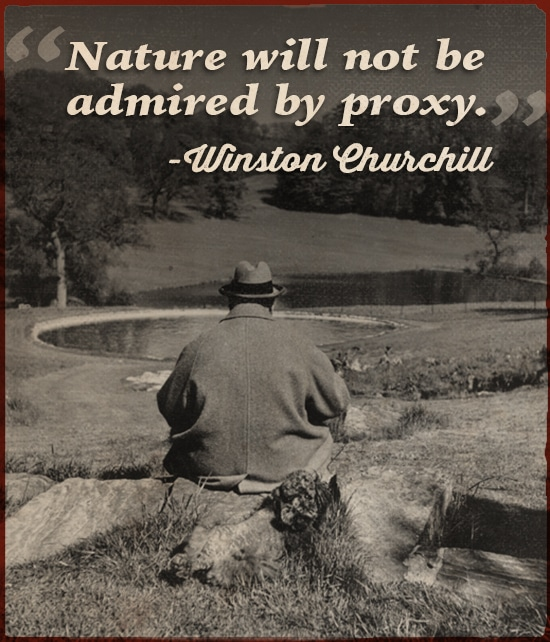 Winston Churchill quote nature will not be admired by proxy.