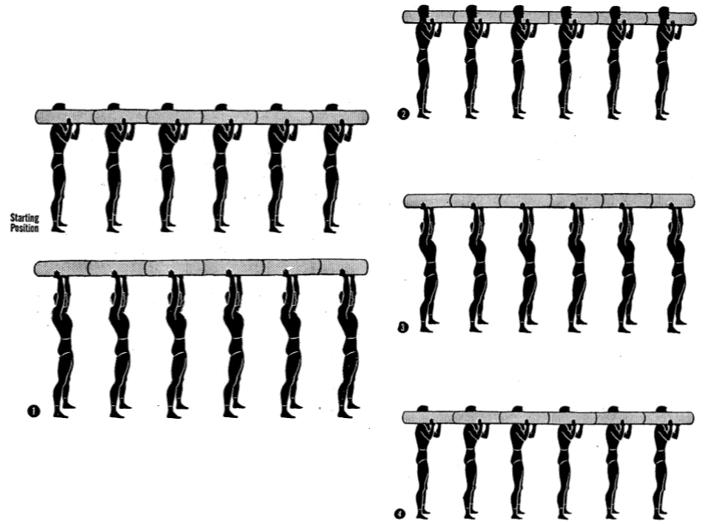 log two arm push up 2