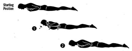 posture ex 6