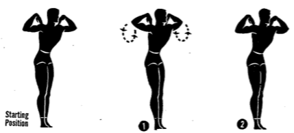 posture ex 8