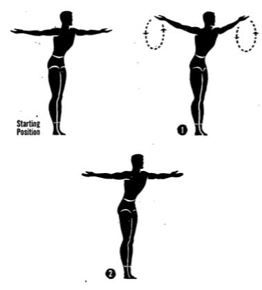posture ex 9 3